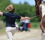 EAL Certification, EAL Facilitator, Cartier Farms EAL, Horse Career, Equine Therapy, Equine Assisted Learning Facilitator, EAL Course