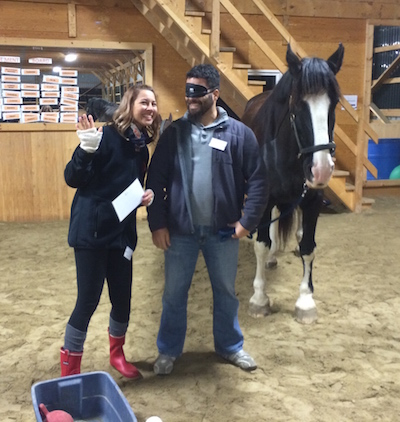 Date Night, Equine Assisted Learning, Couples Program, Unique Date Ideas