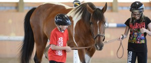 Youth Leadership, Youth Program, Youth At Risk, Equine Therapy, Equine Assisted Learning, Horse Camp