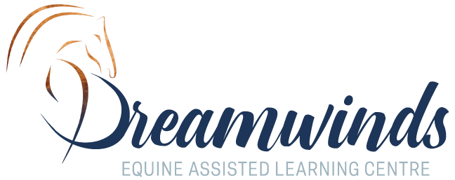 Dreamwinds Equine Assisted Learning